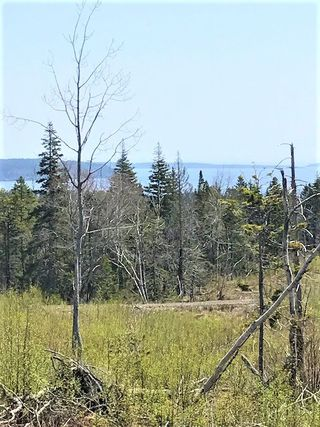 Photo 9: 3 lots Highway 331 in Dublin Shore: 405-Lunenburg County Vacant Land for sale (South Shore)  : MLS®# 201712817