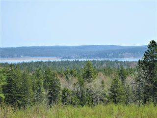 Photo 11: 3 lots Highway 331 in Dublin Shore: 405-Lunenburg County Vacant Land for sale (South Shore)  : MLS®# 201712817