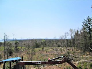 Photo 4: 3 lots Highway 331 in Dublin Shore: 405-Lunenburg County Vacant Land for sale (South Shore)  : MLS®# 201712817