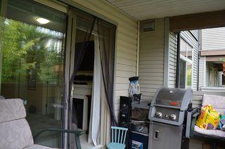 Photo 14: 206 10088 148 STREET in Surrey: Guildford Condo for sale (North Surrey)  : MLS®# R2188280