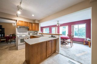Photo 7: 3620 MCRAE Crescent in Port Coquitlam: Woodland Acres PQ House for sale : MLS®# R2203695