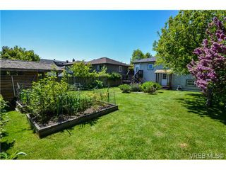 Photo 10: 437 Arnold Avenue in VICTORIA: Vi Fairfield West Residential for sale (Victoria)  : MLS®# 351215