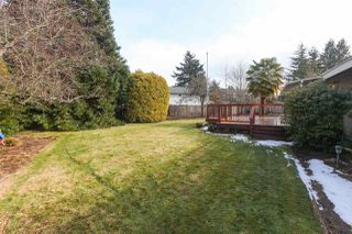 Photo 19: 4931 CEDAR Crescent in Delta: Pebble Hill House for sale (Tsawwassen)  : MLS®# R2243407