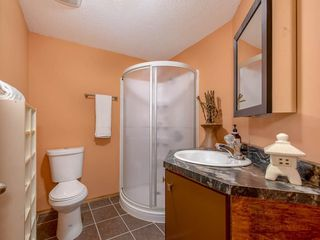 Photo 24: 181 CRANBERRY Close SE in Calgary: Cranston House for sale : MLS®# C4178051