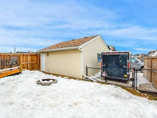Photo 27: 181 CRANBERRY Close SE in Calgary: Cranston House for sale : MLS®# C4178051