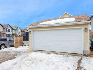 Photo 28: 181 CRANBERRY Close SE in Calgary: Cranston House for sale : MLS®# C4178051