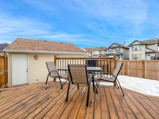 Photo 26: 181 CRANBERRY Close SE in Calgary: Cranston House for sale : MLS®# C4178051
