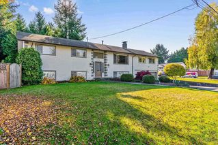 Photo 20: 21756 DONOVAN Avenue in Maple Ridge: West Central House for sale : MLS®# R2316345