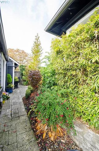 Photo 34: 922 Lawndale Avenue in VICTORIA: Vi Fairfield East Single Family Detached for sale (Victoria)  : MLS®# 401173