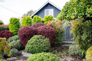 Photo 24: 922 Lawndale Avenue in VICTORIA: Vi Fairfield East Single Family Detached for sale (Victoria)  : MLS®# 401173