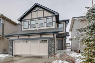 Main Photo: 3314 CUTLER Crescent in Edmonton: Zone 55 House for sale : MLS®# E4135894