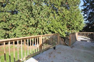Photo 17: 21150 CUTLER Place in Maple Ridge: Southwest Maple Ridge House for sale : MLS®# R2412425