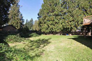 Photo 14: 21150 CUTLER Place in Maple Ridge: Southwest Maple Ridge House for sale : MLS®# R2412425