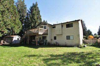 Photo 19: 21150 CUTLER Place in Maple Ridge: Southwest Maple Ridge House for sale : MLS®# R2412425
