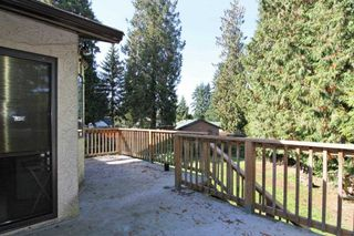 Photo 16: 21150 CUTLER Place in Maple Ridge: Southwest Maple Ridge House for sale : MLS®# R2412425