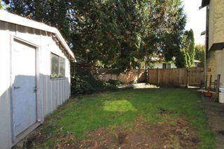 Photo 18: 21150 CUTLER Place in Maple Ridge: Southwest Maple Ridge House for sale : MLS®# R2412425