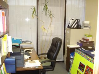 Photo 4: 00 00 in Edmonton: Zone 23 Business for sale : MLS®# E4179093