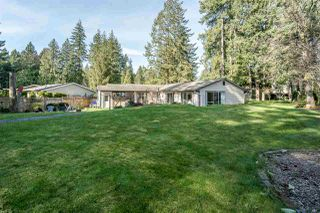 Photo 19: 20073 45A Avenue in Langley: Langley City House for sale : MLS®# R2446446