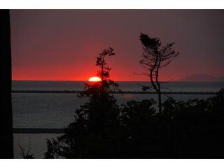 Photo 3: 731 ENGLISH BLUFF Road in Tsawwassen: English Bluff House for sale : MLS®# V1055207