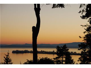 Photo 7: 731 ENGLISH BLUFF Road in Tsawwassen: English Bluff House for sale : MLS®# V1055207