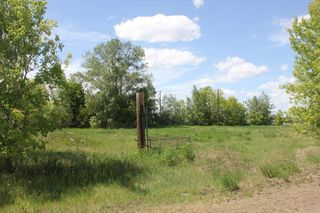 Main Photo: 12427 49 Street in Edmonton: Zone 23 Vacant Lot for sale : MLS®# E4004129