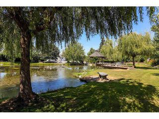 "Photo 3: 22317 64 Avenue in Langley: Salmon River House for sale in ""MILNER"" : MLS®# R2041638"