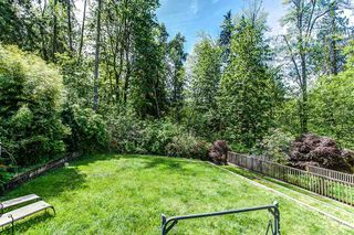 Photo 16: 24426 MCCLURE Drive in Maple Ridge: Albion House for sale : MLS®# R2067948