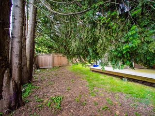 Photo 9: 5445 MANOR Street in Burnaby: Central BN House 1/2 Duplex for sale (Burnaby North)  : MLS®# R2083747