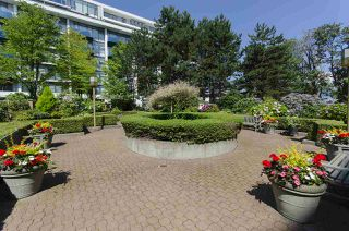 "Photo 16: 210 2201 PINE Street in Vancouver: Fairview VW Condo for sale in ""Meridian Cove"" (Vancouver West)  : MLS®# R2092672"