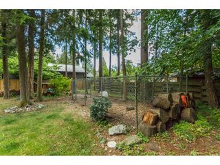 """Photo 17: 20540 46 Avenue in Langley: Langley City House for sale in """"Mossey Estates"""" : MLS®# R2093115"""