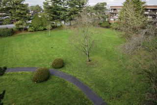 "Photo 12: 302 8860 NO 1 Road in Richmond: Boyd Park Condo for sale in ""APPLE GREENE"" : MLS®# R2030107"