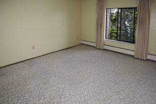 "Photo 9: 302 8860 NO 1 Road in Richmond: Boyd Park Condo for sale in ""APPLE GREENE"" : MLS®# R2030107"