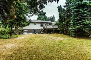 Photo 12: 21097 GLENWOOD Avenue in Maple Ridge: Northwest Maple Ridge House for sale : MLS®# R2205159