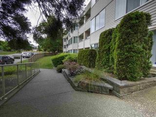 Photo 2: 212 9635 121 Street in Surrey: Cedar Hills Condo for sale (North Surrey)  : MLS®# R2235066