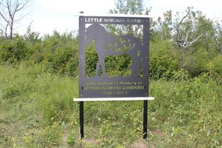 Photo 7: Twp Rd 561A RR45: Rural St. Paul County Rural Land/Vacant Lot for sale : MLS®# E4099695