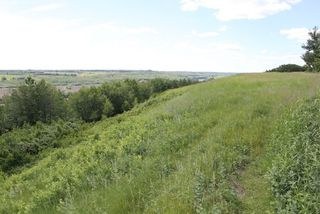 Photo 8: Twp Rd 561A RR45: Rural St. Paul County Rural Land/Vacant Lot for sale : MLS®# E4099695