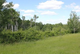 Photo 6: Twp Rd 561A RR45: Rural St. Paul County Rural Land/Vacant Lot for sale : MLS®# E4099695