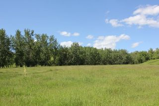 Photo 10: Twp Rd 561A RR45: Rural St. Paul County Rural Land/Vacant Lot for sale : MLS®# E4099695