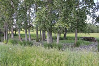 Photo 4: Twp Rd 561A RR45: Rural St. Paul County Rural Land/Vacant Lot for sale : MLS®# E4099695