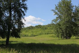 Photo 5: Twp Rd 561A RR45: Rural St. Paul County Rural Land/Vacant Lot for sale : MLS®# E4099695