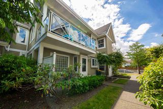"Photo 1: 38 23560 119 Avenue in Maple Ridge: Cottonwood MR Townhouse for sale in ""Holly Hock"" : MLS®# R2273557"