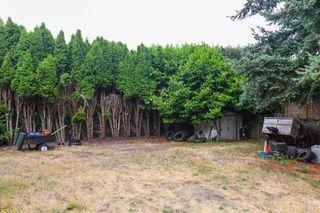 "Photo 20: 5775 16 Avenue in Delta: Beach Grove House for sale in ""Beach Grove"" (Tsawwassen)  : MLS®# R2317249"