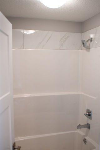 Photo 29:  in Edmonton: Zone 03 House for sale : MLS®# E4140928