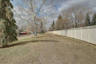 Photo 32: 467 QUEENSLAND Circle SE in Calgary: Queensland Detached for sale : MLS®# C4236793