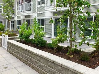 """Photo 3: 118 618 LANGSIDE Avenue in Coquitlam: Coquitlam West Townhouse for sale in """"BLOOM"""" : MLS®# R2359810"""