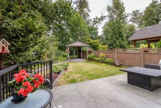 """Photo 19: 9786 204 Street in Langley: Walnut Grove House for sale in """"YORKSON CREEK"""" : MLS®# R2382699"""