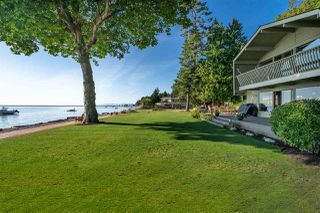 Photo 8: 532 TSAWWASSEN BEACH Road in Delta: English Bluff House for sale (Tsawwassen)  : MLS®# R2396200