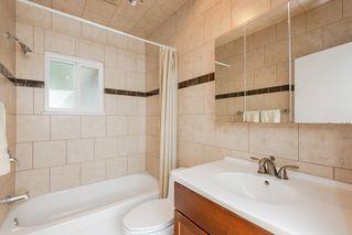 Photo 12: 11851 71 Street in Edmonton: Zone 06 House for sale : MLS®# E4169480