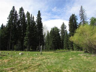 Photo 14: 127, 5241 TWP Rd 325A: Rural Mountain View County Land for sale : MLS®# C4299936