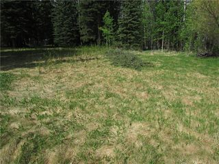 Photo 27: 127, 5241 TWP Rd 325A: Rural Mountain View County Land for sale : MLS®# C4299936